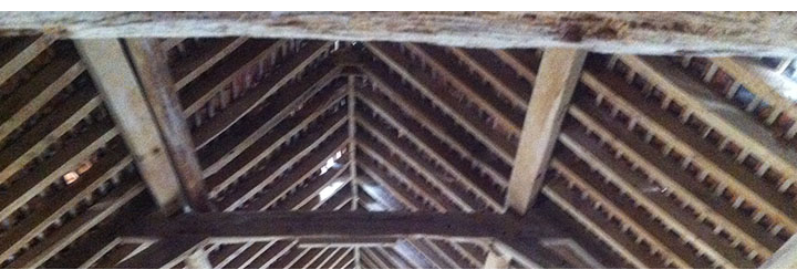Dry Rot Specialists