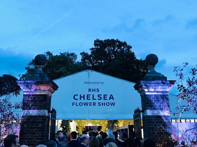 Everything You Need to Know for the Chelsea Flower Show 2021