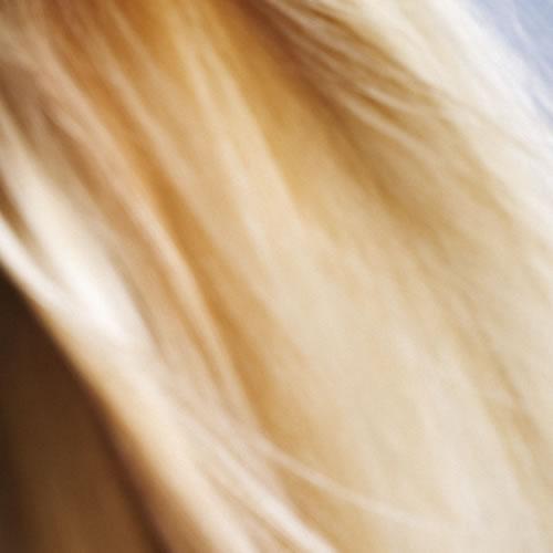 Female Hair Loss <br/>Information
