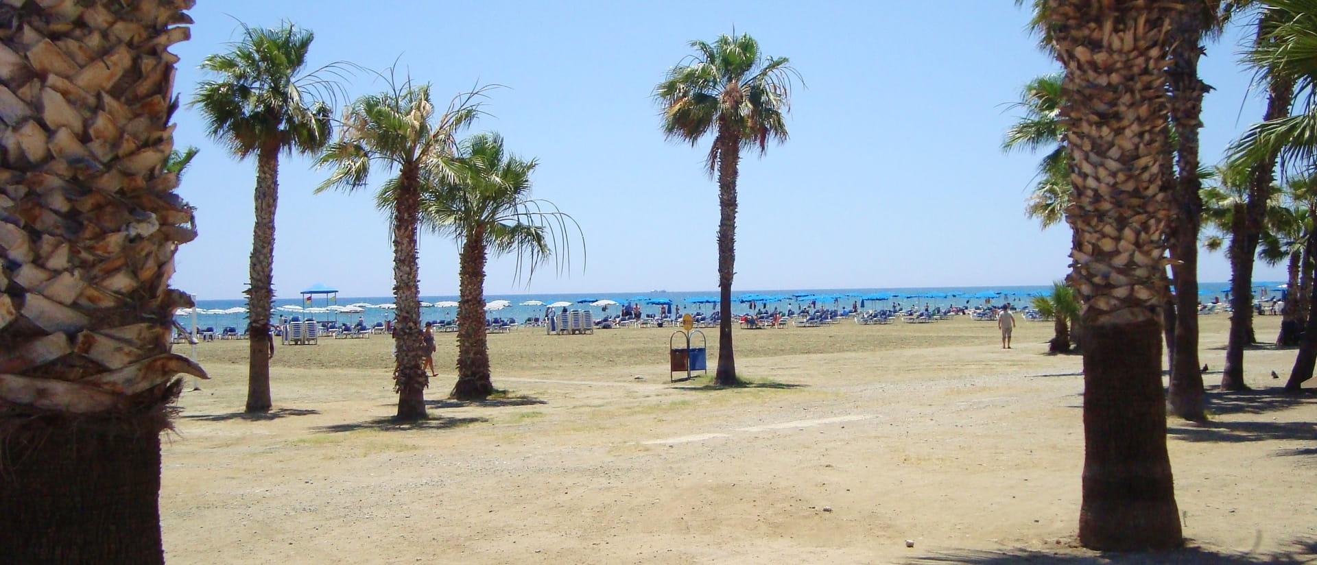 Destination Larnaca - Summer Holidays