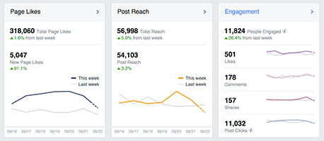 facebook insights social media marketing