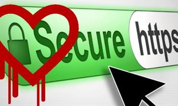 Heartbleed OpenSSL security flaws
