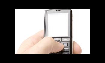 Mobile Marketing: SMS versus Voice Usage