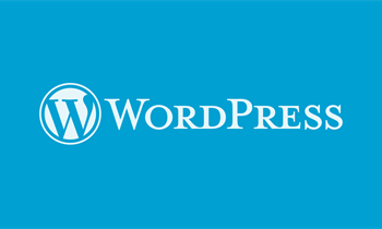 Wordpress is around since 2003 and is now a major CMS